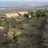 Bagol'Area